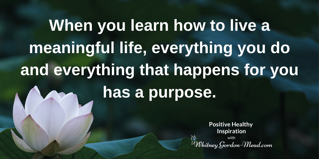 how to live a meaningful life quote lotus background