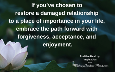 How to Restore a Relationship Part 2: Embracing the Path Forward